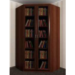 2-створчатый угловой шкаф с распашными дверями