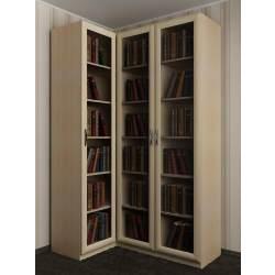 модульный угловой шкаф для книг
