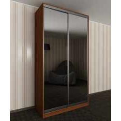 шкаф купе с зеркальной дверью в спальню