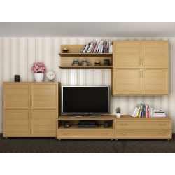 длинная мебельная стенка под телевизор