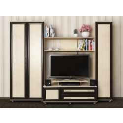мебельная стенка с двумя шкафами